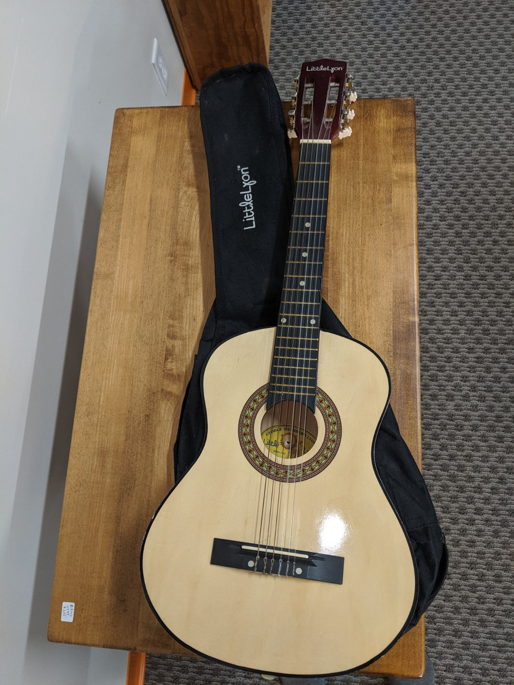 George Washburn Lyon Little Lyon Guitar and case