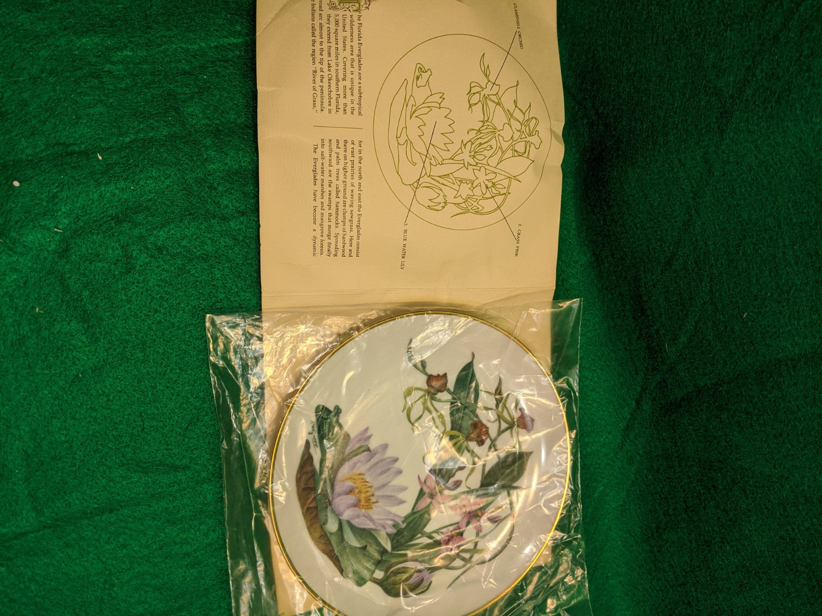"Franklin Mint Wildflowers of the Florida Everglades 9"" decorative plate w 24k gold"