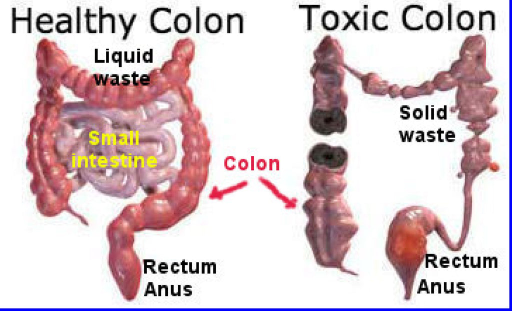 Miracle Oxy-Cleanse Colon Cleanser and Detox – The One