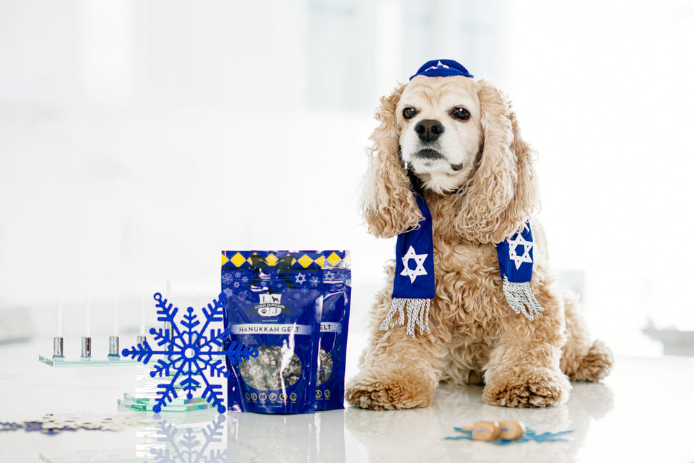 Hanukkah Gelt Bundle | Organic Dog Treats| Wild Blueberries x 2 Pack - Lord Jameson Organic Dog Treats