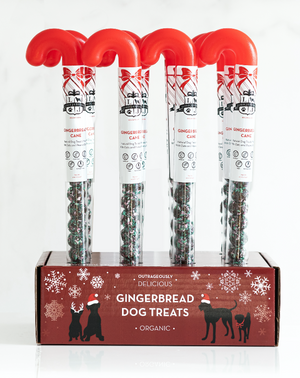 Gingerbread Cane With Display Box / Set of 12 Units - Lord Jameson Organic Dog Treats
