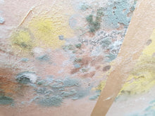 Load image into Gallery viewer, Damp and Mould Inspection Report