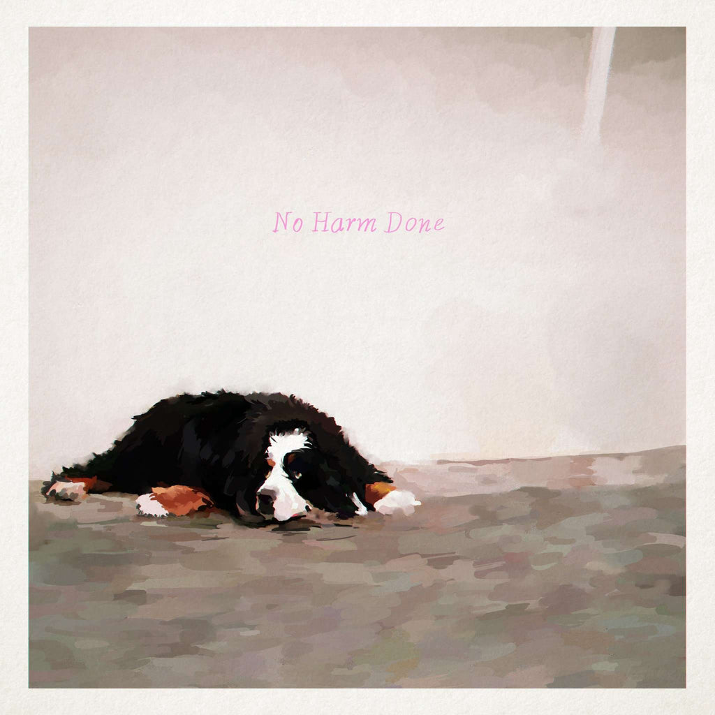 No Harm Done (Cassette) - Flying Out