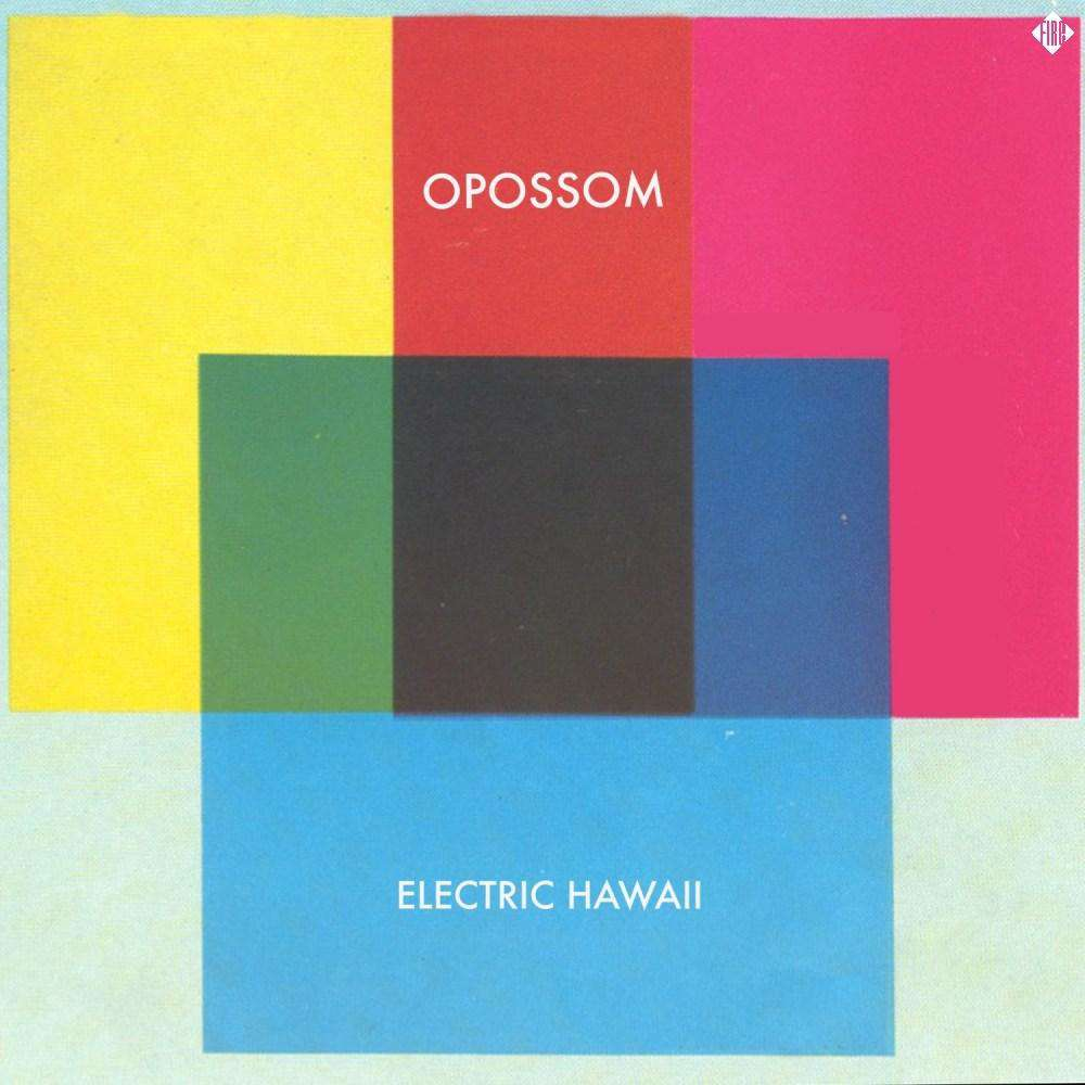 Electric Hawaii - Flying Out