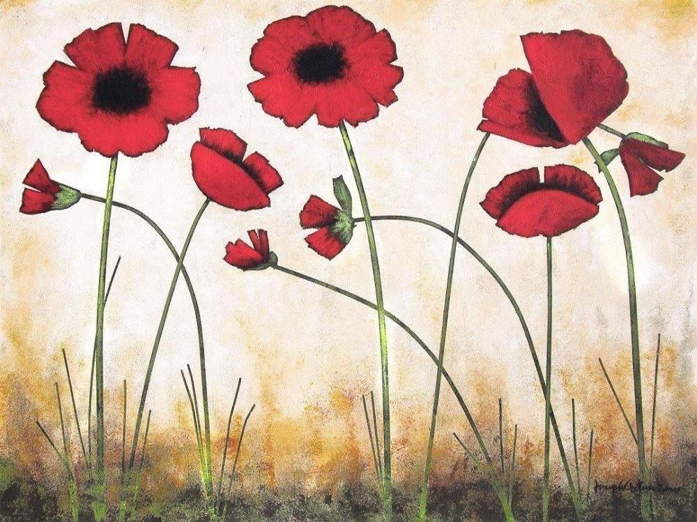 Poppy Print on Canvas
