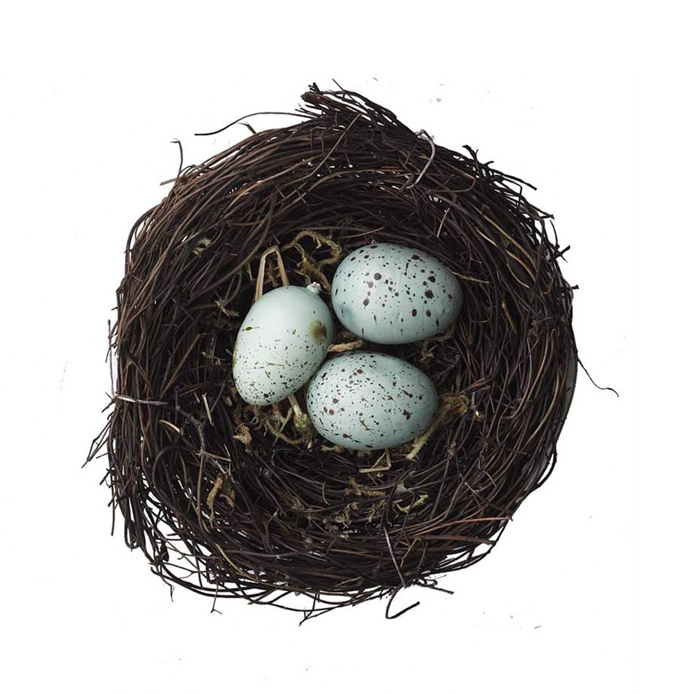 Twig Bird Nest & Blue Eggs