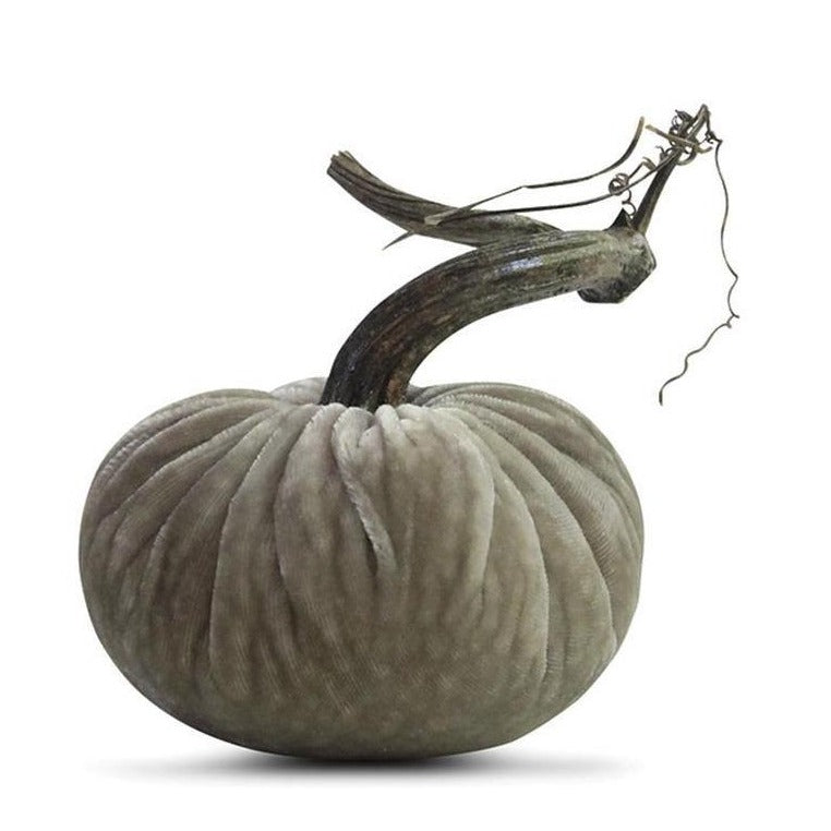 Putty Plush Pumpkin