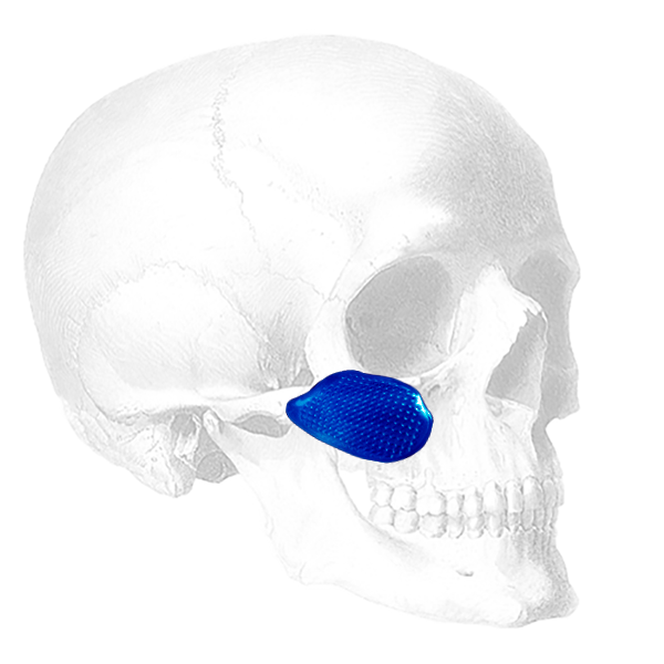 Implantech Conform™ Midfacial Implant (Sold in Pairs)