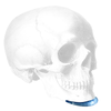 Implantech Conform™ Extended Anatomical Chin Implant