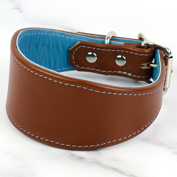Greyhound & Lurcher Colour Contrast Leather Collar