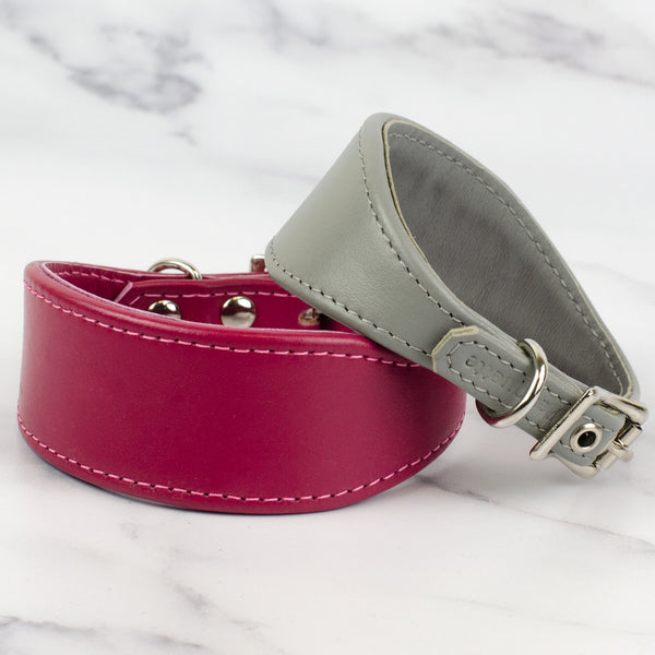 Italian Greyhound Leather Collar
