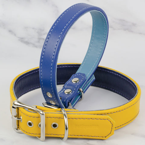 Colour Contrast Leather Dog Collar
