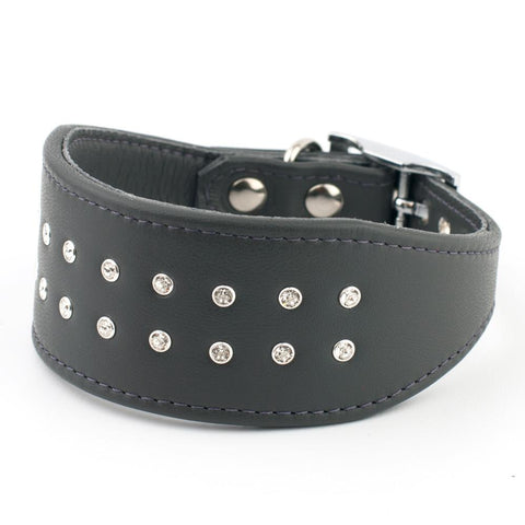 Royal Mile Italian Greyhound Leather Collar