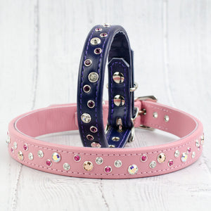 Chaos Theory Leather Dog Collar