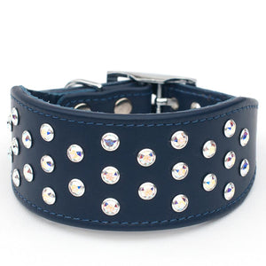 Crystal Clarity Italian Greyhound Leather Dog Collar