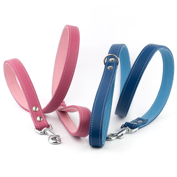 Handmade Colour Contrast Leather Dog Lead