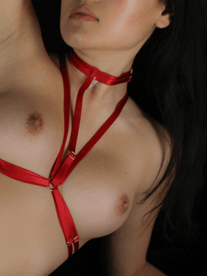 Cage Harness Red