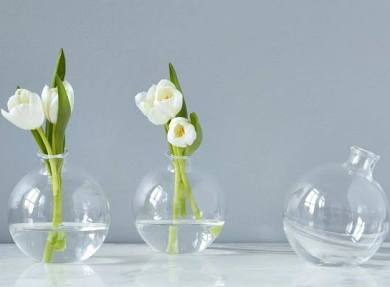 Glass Sphere Vase
