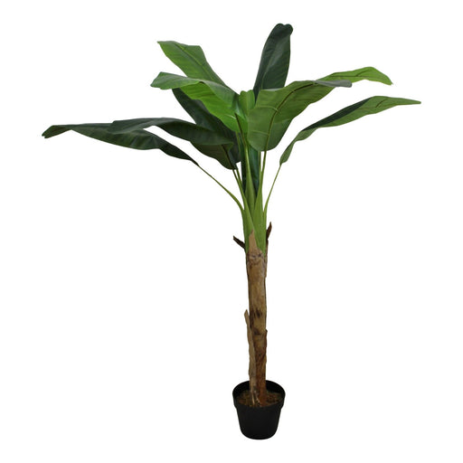 Artificial Banana Tree, 150cm