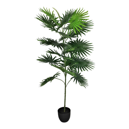 Artificial Fan Palm Tree with 18 leaves, 160cm