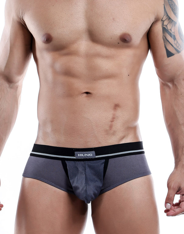Hung  Briefs Gris- XL-HGJ002