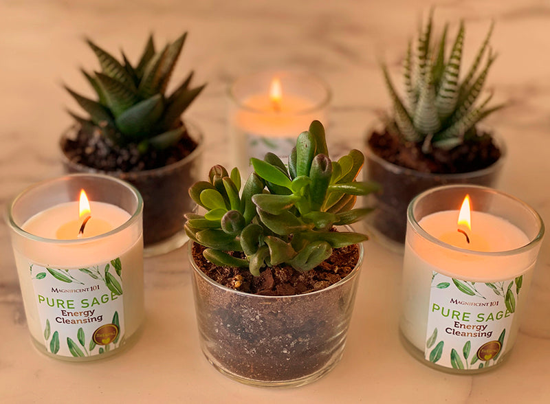 Pure Sage Magnificent101 Pure Sage Smudge Set of 3 Candles for House Energy Cleansing Natural Soy Wax Candles for Aromatherapy Banish Negative Energy I Purification and Chakra Healing