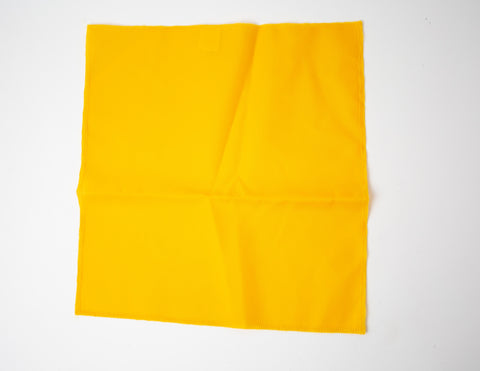 Lacrosse Penalty Flag