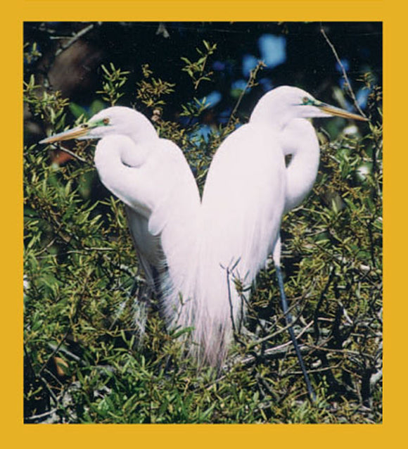 SKU : 00050 - Great Egrets - Magnetic Bookmark