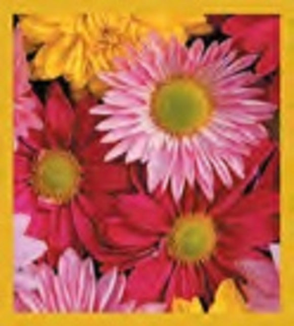 SKU : 00213 - Multicolored Daisies - Magnetic Bookmark