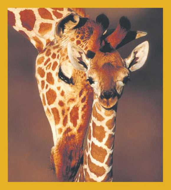 SKU : 01000 - Giraffes - Magnetic Bookmark