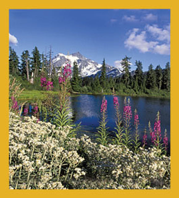 SKU : 06032 - Wildflowers at Mount Shushkan, WA - Magnetic Bookmark