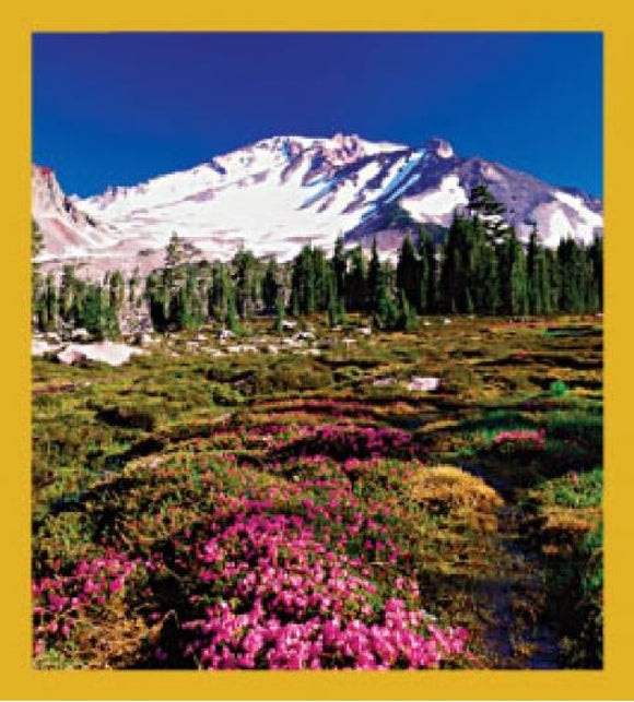 SKU : 06272 - Mount Shasta, CA - Magnetic Bookmark