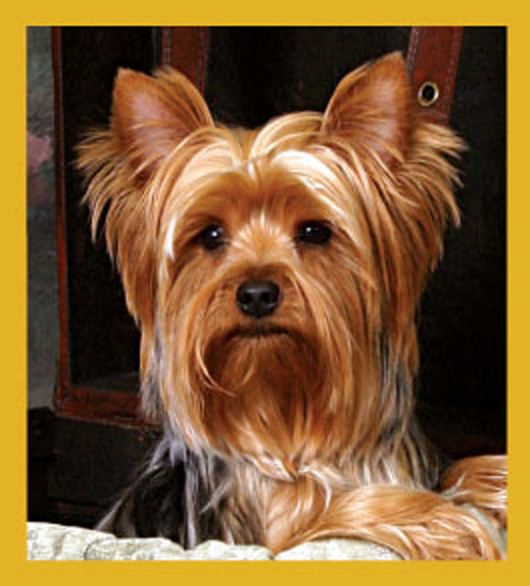 SKU : 06739 - Yorkshire Terrier - Magnetic Bookmark
