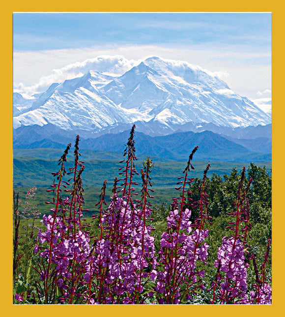 SKU : 06918 - Fireweed & Mt. McKinley - Magnetic Bookmark