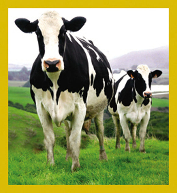 SKU : 07151 - Holstein Cows - Magnetic Bookmark