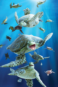 SKU : 20174 - Sea Turtles - 3D Magnet