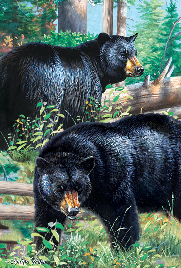 SKU : 20301 - Black Bears - 3D Postcard