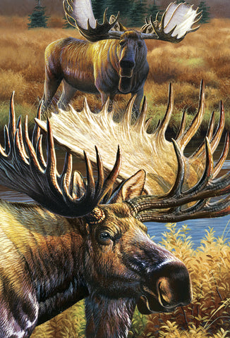 SKU : 20305 - Moose - 3D Postcard