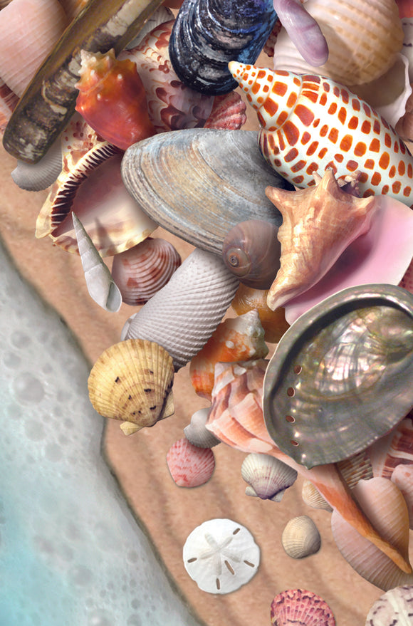 SKU : 20307 - She Sells Sea Shells - Motion Postcard