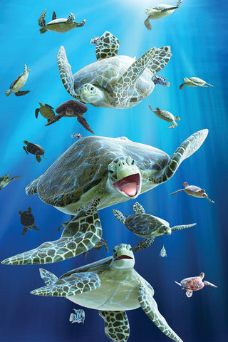 SKU : 20325 - Turtles - 3D Postcard