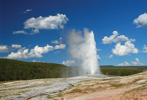 SKU : 20329 - Geyser - Motion Postcard