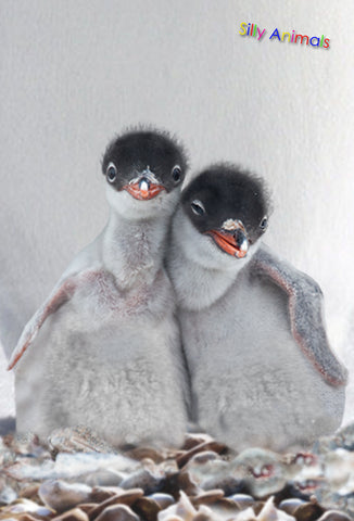 SKU : 20343 - Penguin Besties - 3D Postcard