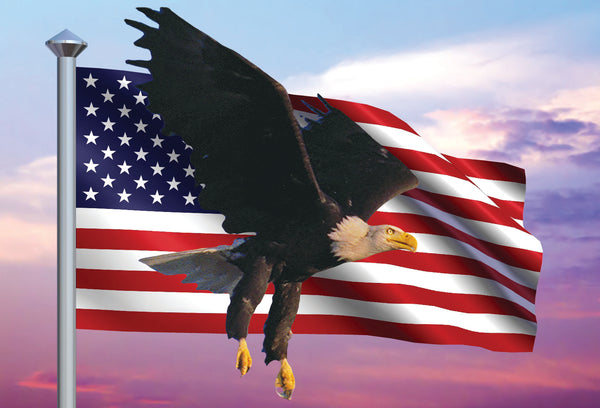 SKU : 20361 - Eagle Flag - Motion Postcard