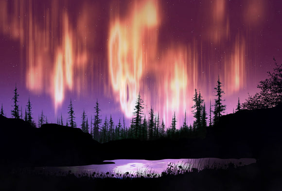 SKU : 20381 - Northern Lights Forest - Motion Postcard