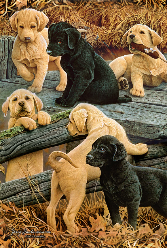 SKU : 20391 - Lab Puppies - 3D Postcard