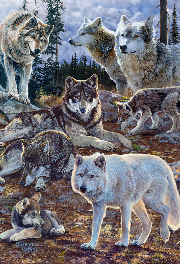 SKU : 20394 - Pack of Wolves - 3D Postcard