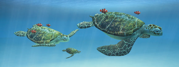 SKU : 845 - Sea Turtles - Motion Bookmark/ 6