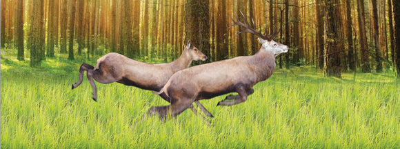 SKU : 933 - Deer Jumping - Motion Bookmark/ 6