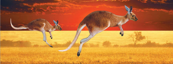 SKU : 936 - Kangaroos - Motion Bookmark/ 6