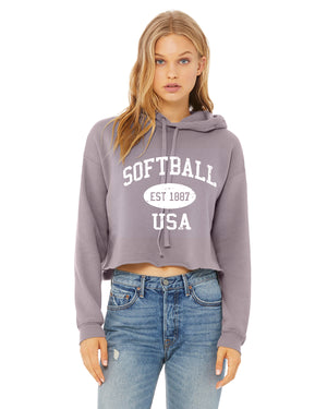 Cropped Softball Hoodie Vintage USA
